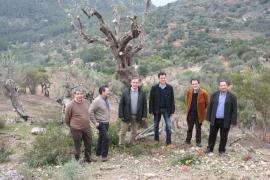 Inversiones en lam Serra