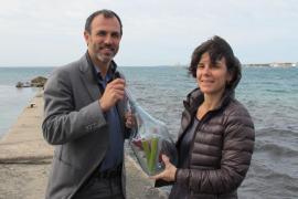 Barceló pide para Balears el mismo tratamiento por insularidad que Canarias