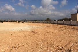 Emaya pone en marcha un nuevo punto verde de 2.000 m2 en Sant Jordi