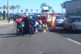 Recogen más de 7.000 firmas para pedir que se eliminen las calesas en Palma