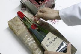 La venta de licores típicos de Balears aumentó un 4,5 % en 2014