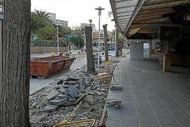 Vecinos de Magaluf denuncian la «tala salvaje» de árboles de la vía pública