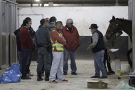 Operación de la Guardia Civil en Son Pardo y varias cuadras