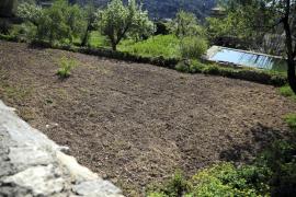 El PP de Valldemossa dice que la gestión del Consistorio  sobre L'Hort de Cartoixa costará dos millones a los vecinos