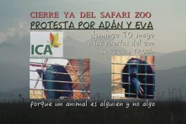 Protesta animalista este domingo frente a las puertas del Safari Zoo de sa Coma
