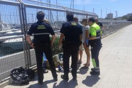 Herido un ciclista tras caerse de la bici por un golpe de calor en el Passeig Marítim