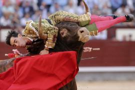 Jiménez Fortes, herido en el cuello en Las Ventas