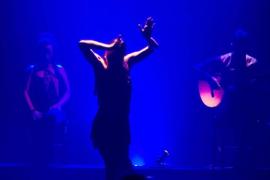 Noche de 'Pasión flamenca'