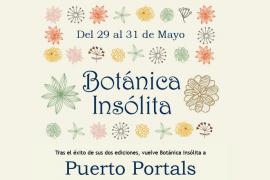 Botánica Insólita, una feria dedicada a las plantas y los productos ecológicos