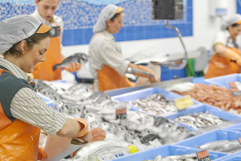 Mercadona contratará a más de 300 empleados en Balears para el verano