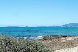 Aprueban la redacción de una carta arqueológica subacuática de la Isla