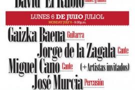 Festival de Flamenco de Lloret de Vistalegre