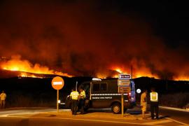 WWF advierte que los bosques están «listos para arder»