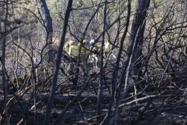 Estabilizado el incendio agrícola forestal de Eivissa