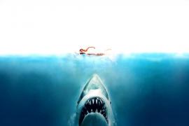 'Tiburón' celebra cuarenta años de terror bajo la superficie del océano