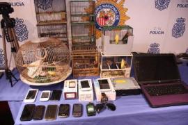 Desarticulada una banda de ladrones por cometer más de 30 robos con fuerza