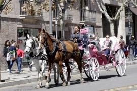 Turistas paseando en galera por el centro de Palma.