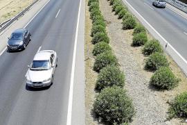 3,6 kilómetros sin barreras en la mediana de la autopista del aeropuerto
