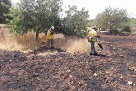 Incendio agrícola en Pòrtol