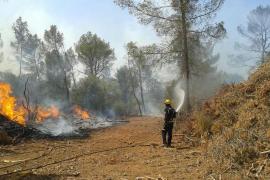 Controlado un pequeño incendio en la carretera de Sineu a Muro
