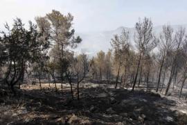 Controlado el incendio forestal de Sant Miquel que ha quemado 30 hectáreas