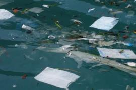El GOB denuncia la aparición de «una sopa de plásticos» en la costa de Cabrera