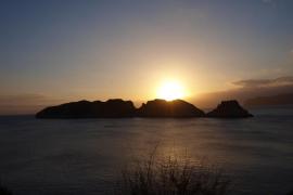 Oceana pide unir las reservas marinas de Malgrats y el Toro para ampliarlas