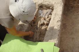 Hallan un esqueleto infantil en unas tumbas excavadas en Pol·lèntia en los años treinta