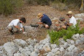 Excavarán una naveta doble en los Closos de Can Gaià, en Portocolom