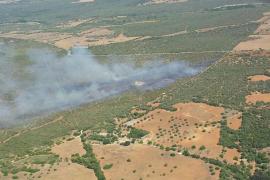 Extinguido el incendio declarado en Petra tras quemar 22,2 hectáreas
