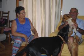«Me han tenido que ingresar dos veces por el disgusto de ver cómo asesinaban a mis perros»