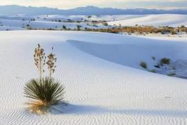 Dos turistas fallecen y su hijo salva la vida en el desierto de las Arenas Blancas