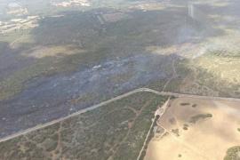 Medi Ambient pide suspender la caza en Son Doblons tras los últimos incendios