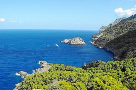 El Ajuntament de Sóller pide que se impulse una reserva marina en la zona