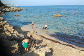Bañistas de es Carregador se quejan de la presencia de perros en la playa