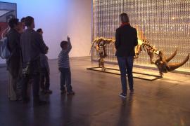 Visita al museo Sa Bassa Blanca.