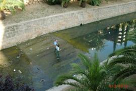 El Govern invierte 900.000 euros en el acondicionamiento de torrentes