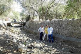 El Govern quiere extender el uso de asnos y bueyes para limpiar torrentes