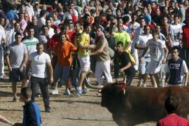 Tensión en el torneo del Toro de la Vega