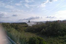 Fumigan con un helicóptero las zonas húmedas del pla de Sant Jordi