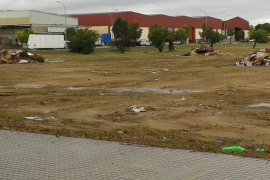 Denuncian la «dejadez» del Ajuntament de Binissalem en el polígono industrial