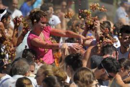 El Ajuntament de Binissalem se marca el objetivo de mejorar la Festa des Vermar