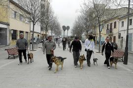 Plan de choque para acabar con los excrementos animales en la vía pública