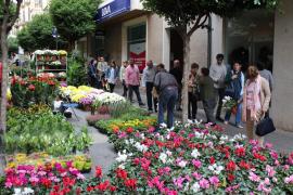 Las flores colorean la primera previa del Dijous Bo