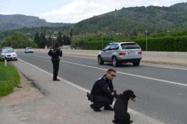 Policías de Andratx capturan a un perro que deambulaba por la carretera