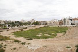 Cort pide al Mallorca unidad de acción para acordar el futuro del Lluís Sitjar