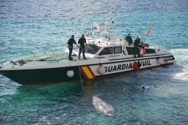 Rescatan al cetáceo que apareció muerto junto a la costa en Sant Elm