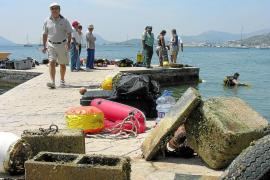 El tránsito marítimo pasa factura a las praderas marinas de la bahía de Pollença