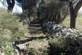 El Ajuntament de Muro habilita parte del camino viejo de Sineu