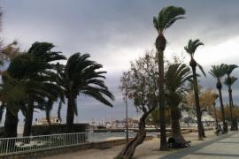 Este viernes, viento fuerte en Balears con rachas de 70/80 kilómetros por hora